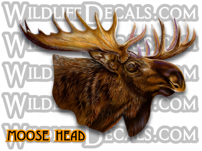 Moose Head Wildlife Decals