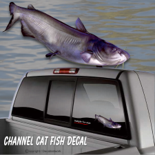 channel catfish fishing sticker