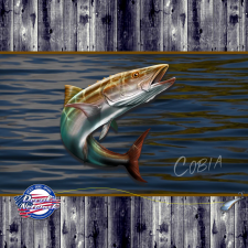 cobia fish decal sticker