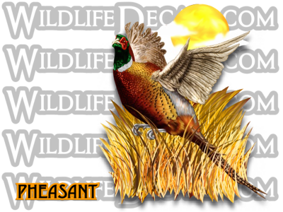 pheasant flying decal