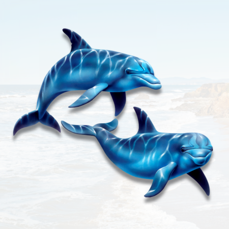 color dolphins vinyl decal