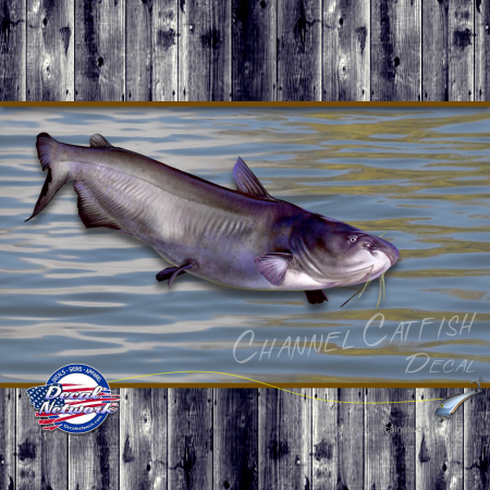 channel cat fish decal sticker