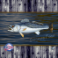 speckled sea trout decal